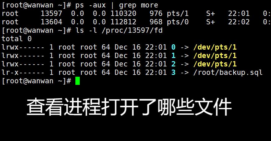 Linux中怎样查看一个进程打开了哪些文件