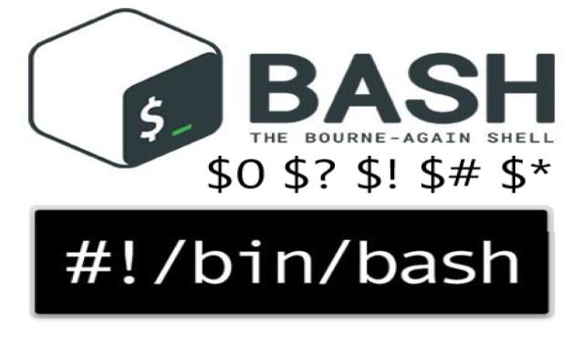 Linux shell中$ $1 $! $? $0 $# $$ $*等的含义